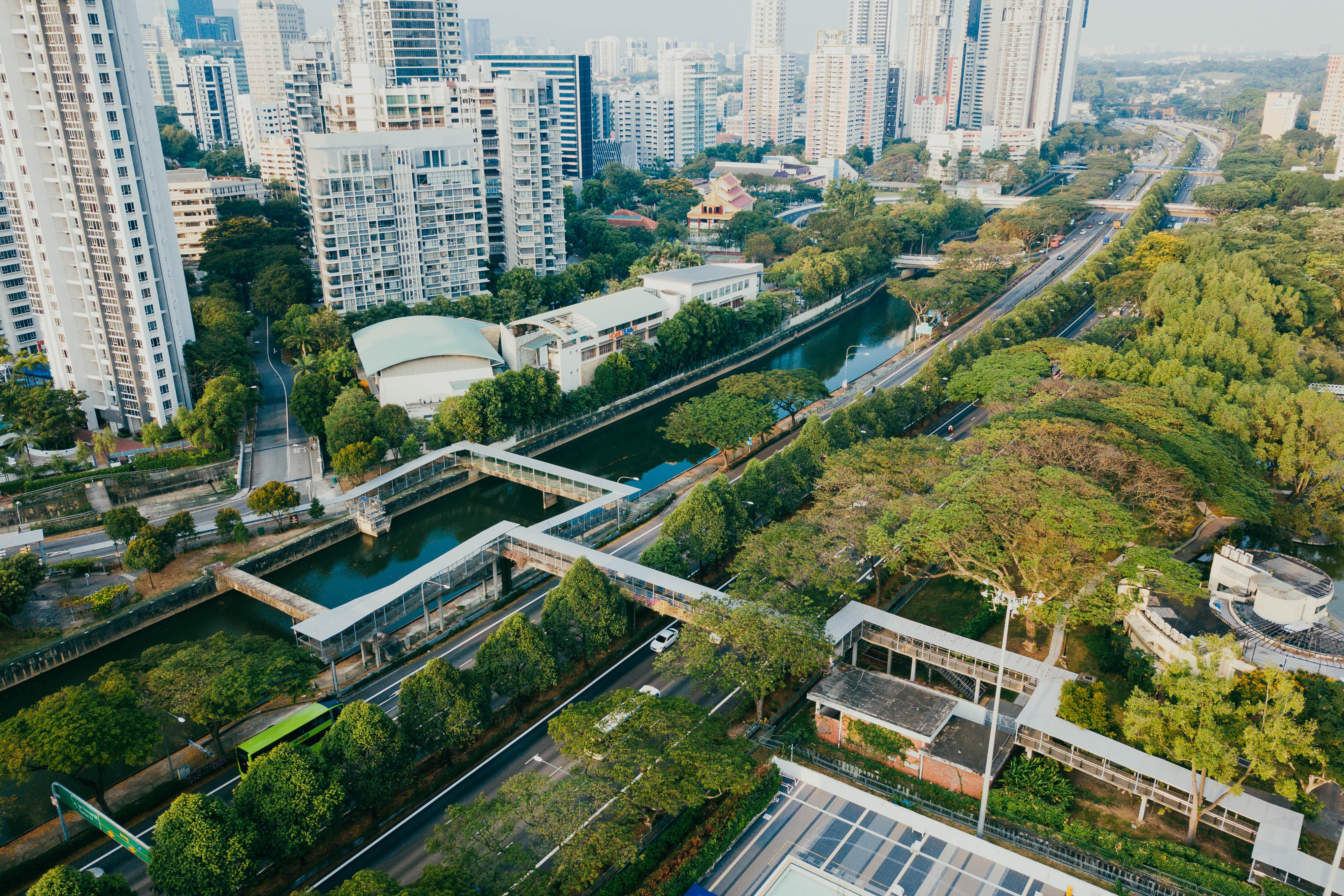aerial photography of buildings and trees at daytime