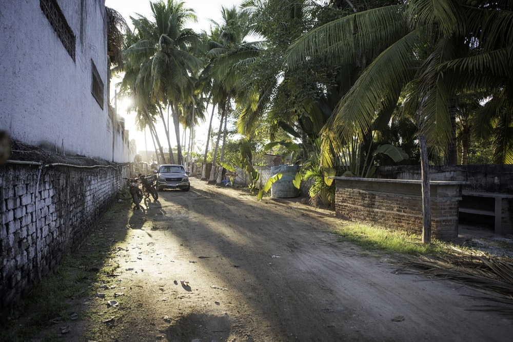 car beside motorcycle surrounded by coconut trees
