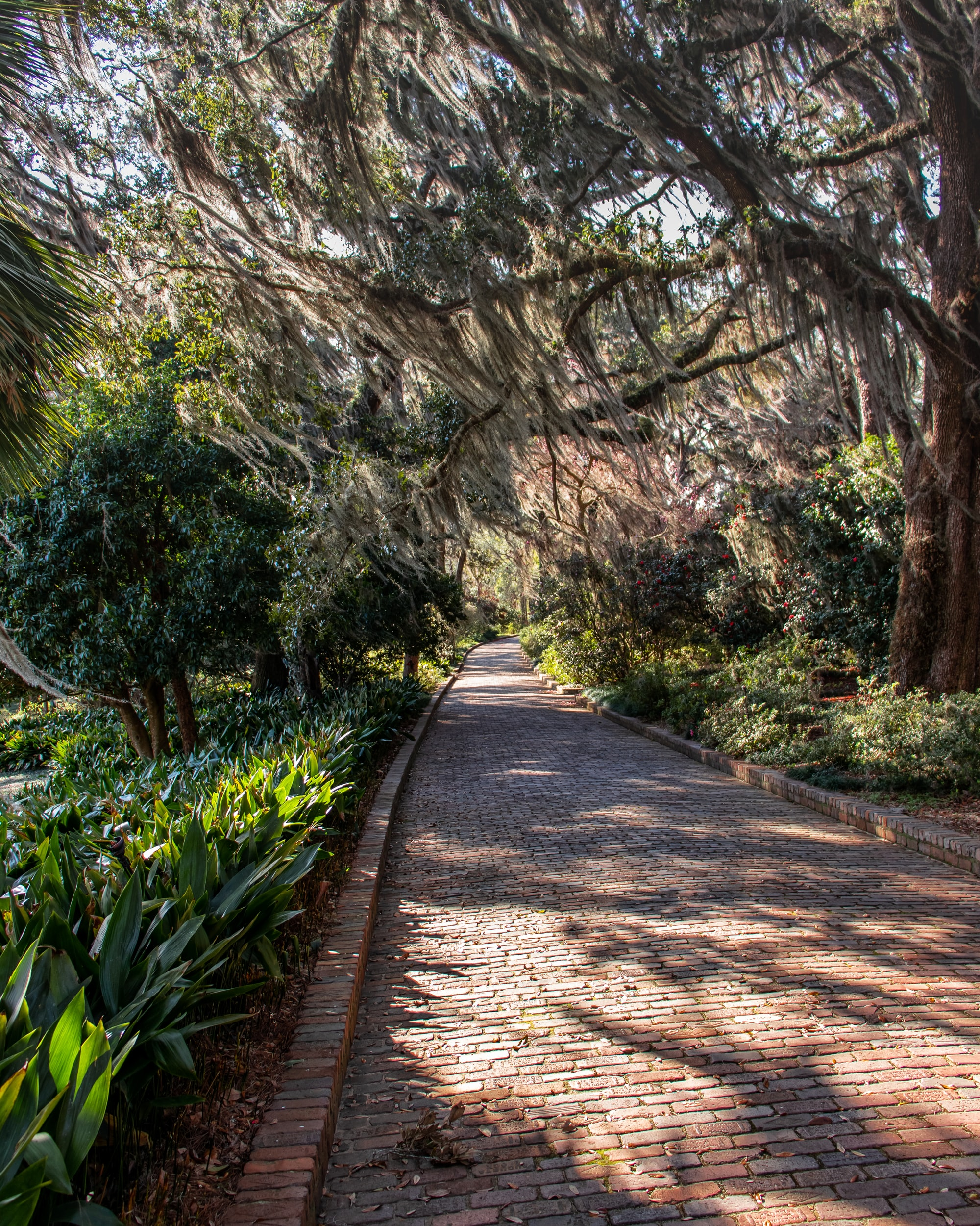 A List of the Best Parks in Florence, South Carolina