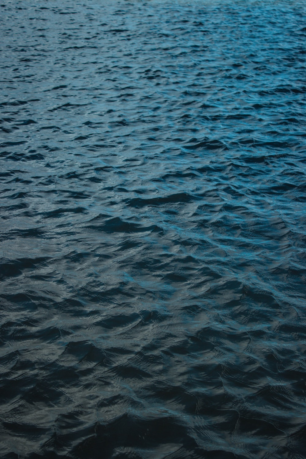 selective focus photography of body of water at daytime
