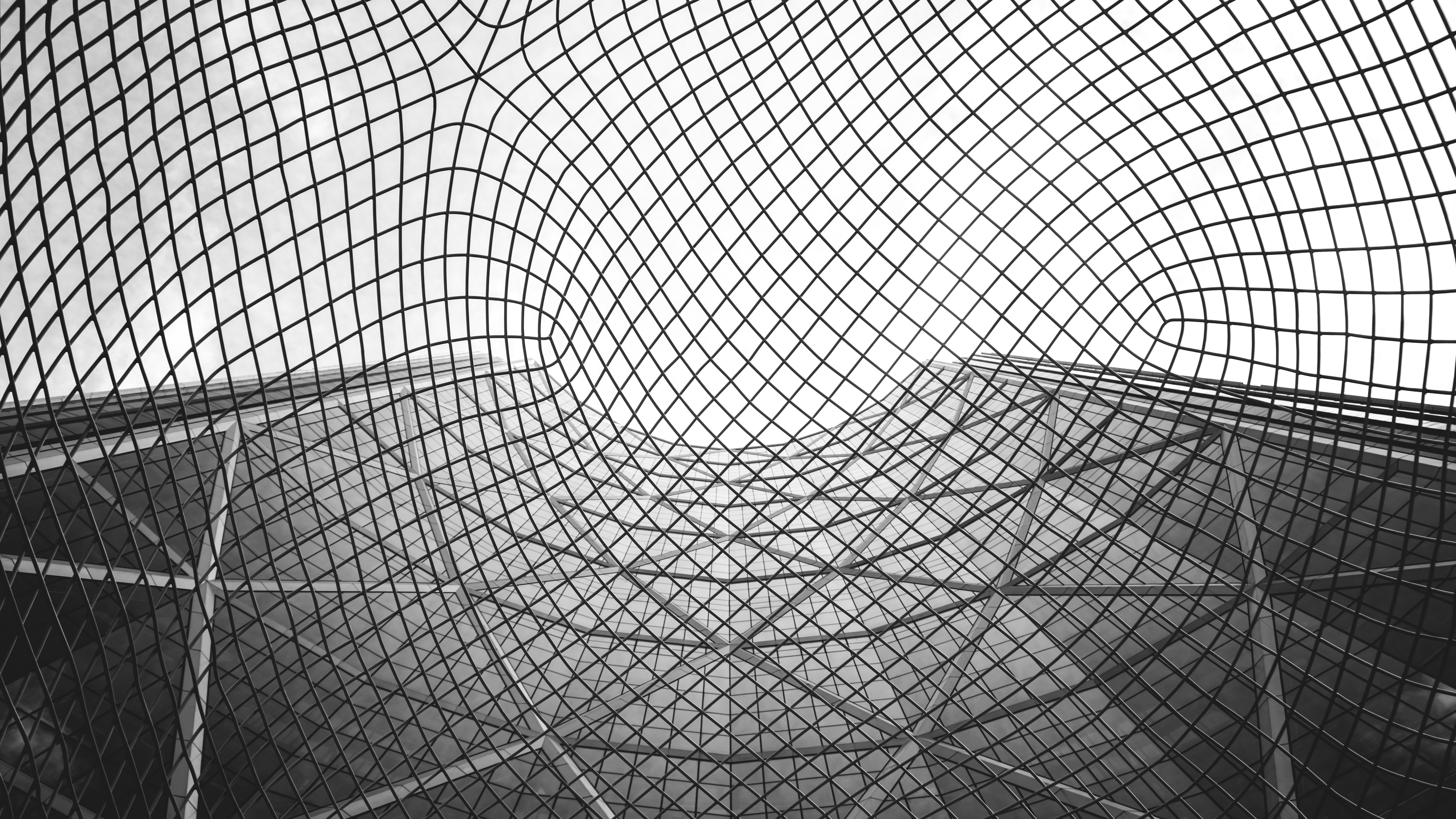grayscale photography of net