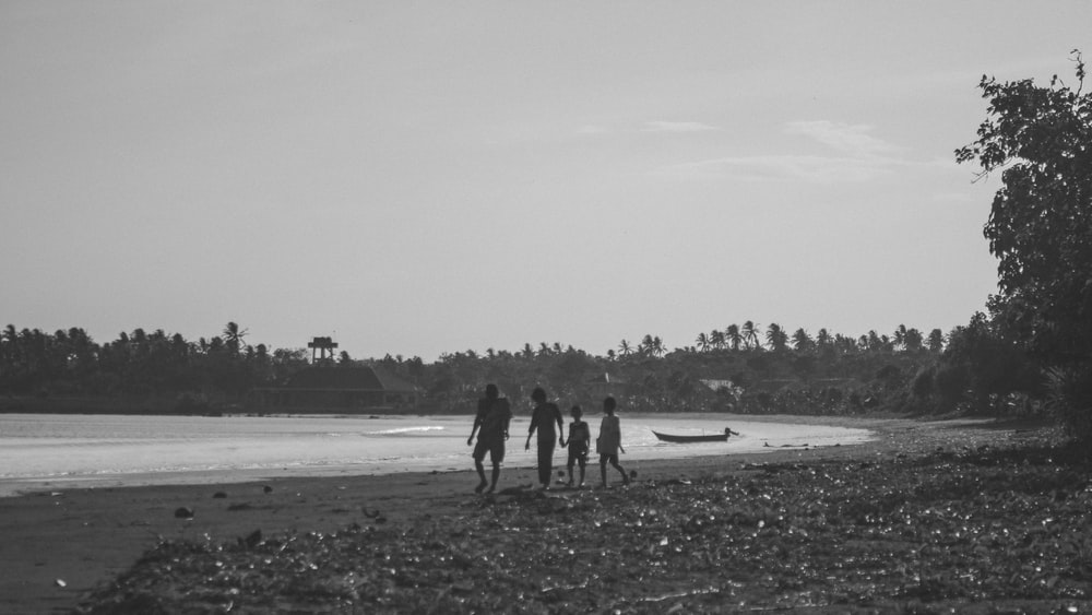 four person walking on shore near trees