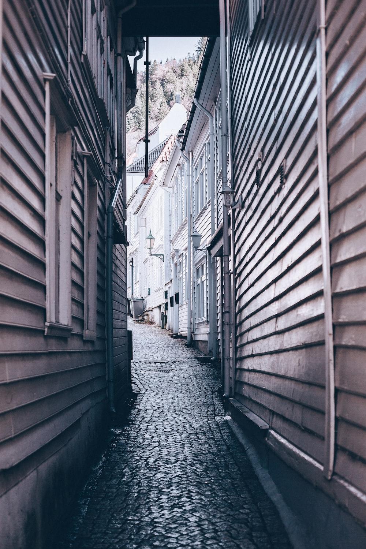 empty pathway in between of buildings