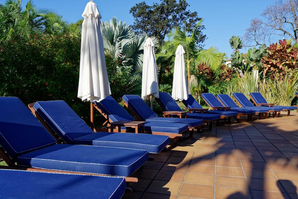 blue sun lounger lot