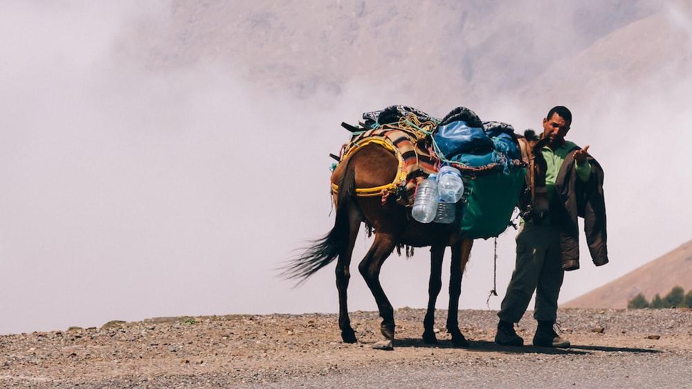 man standing beside brown horse