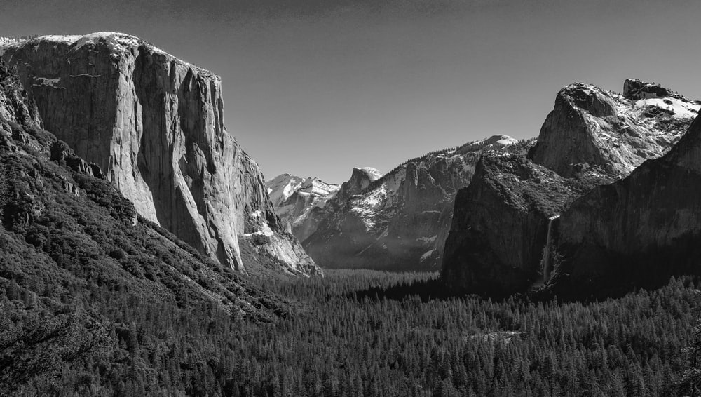 grayscale photography of rock formation and forest