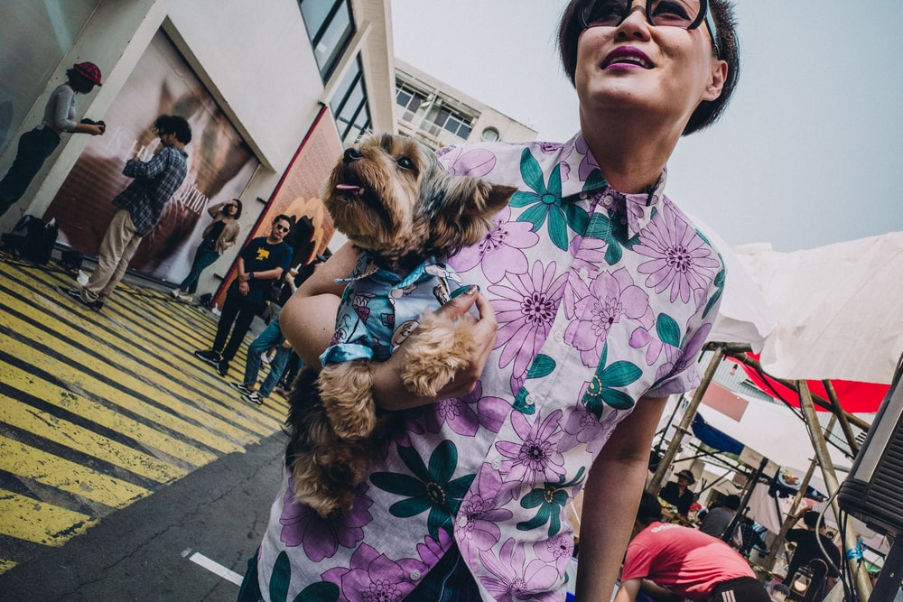 woman walking whiled holding puppy