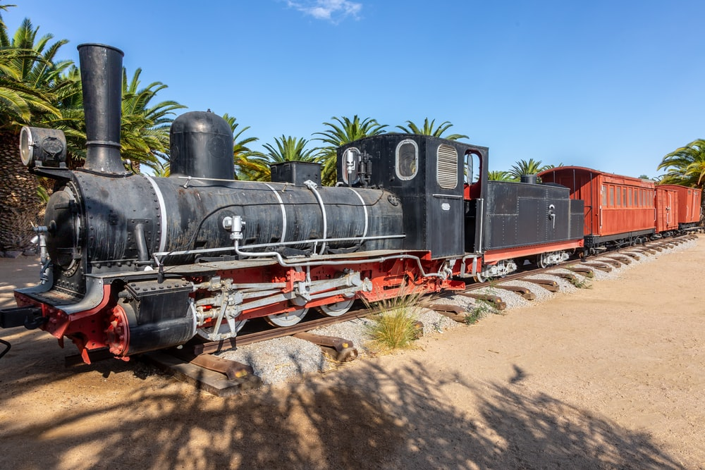 black and brown train