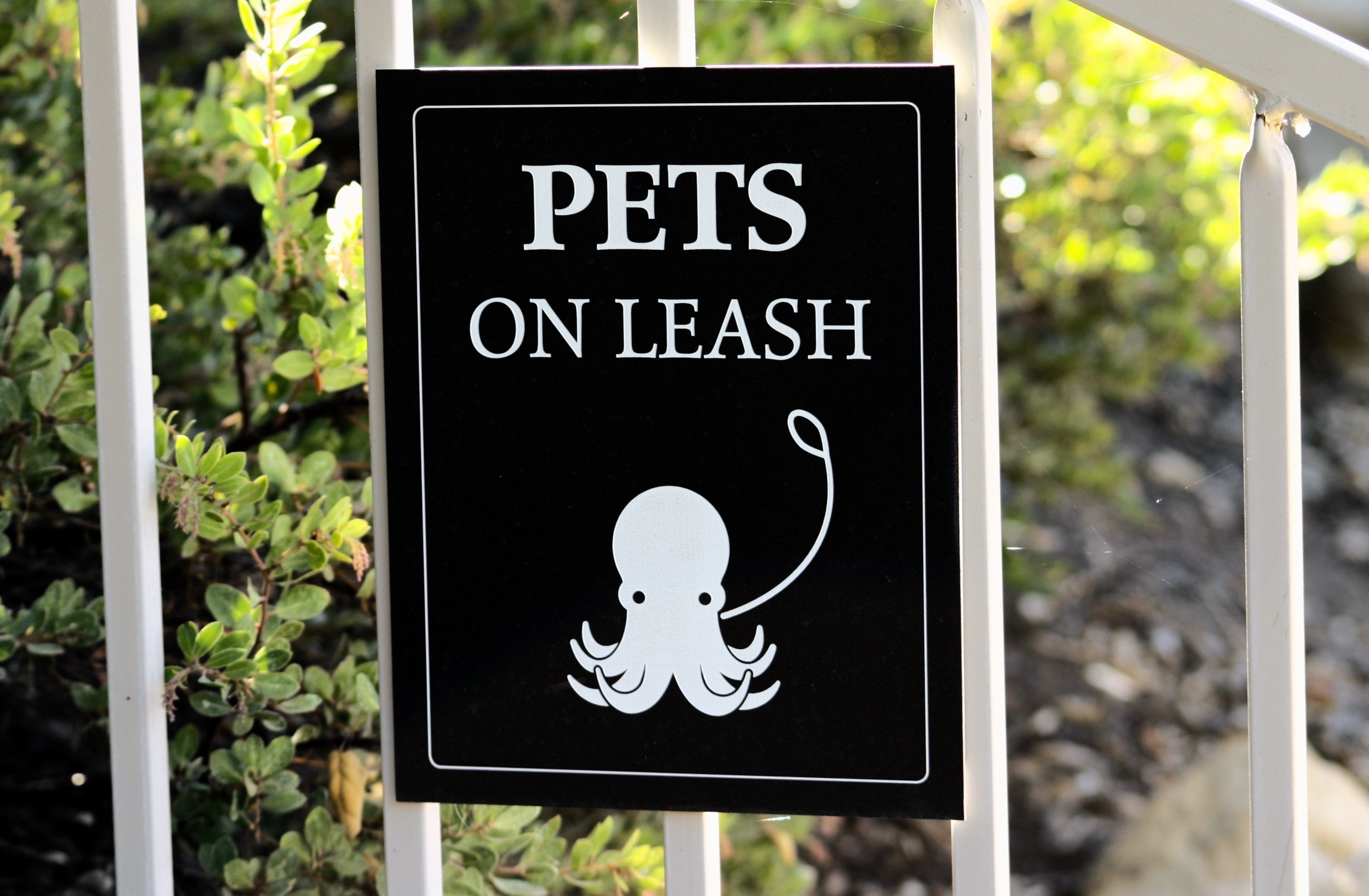 pets on leash signage