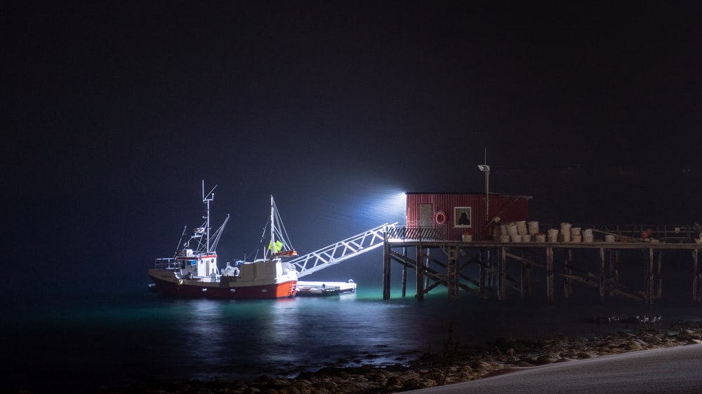 white and red trawler dock at nighttime