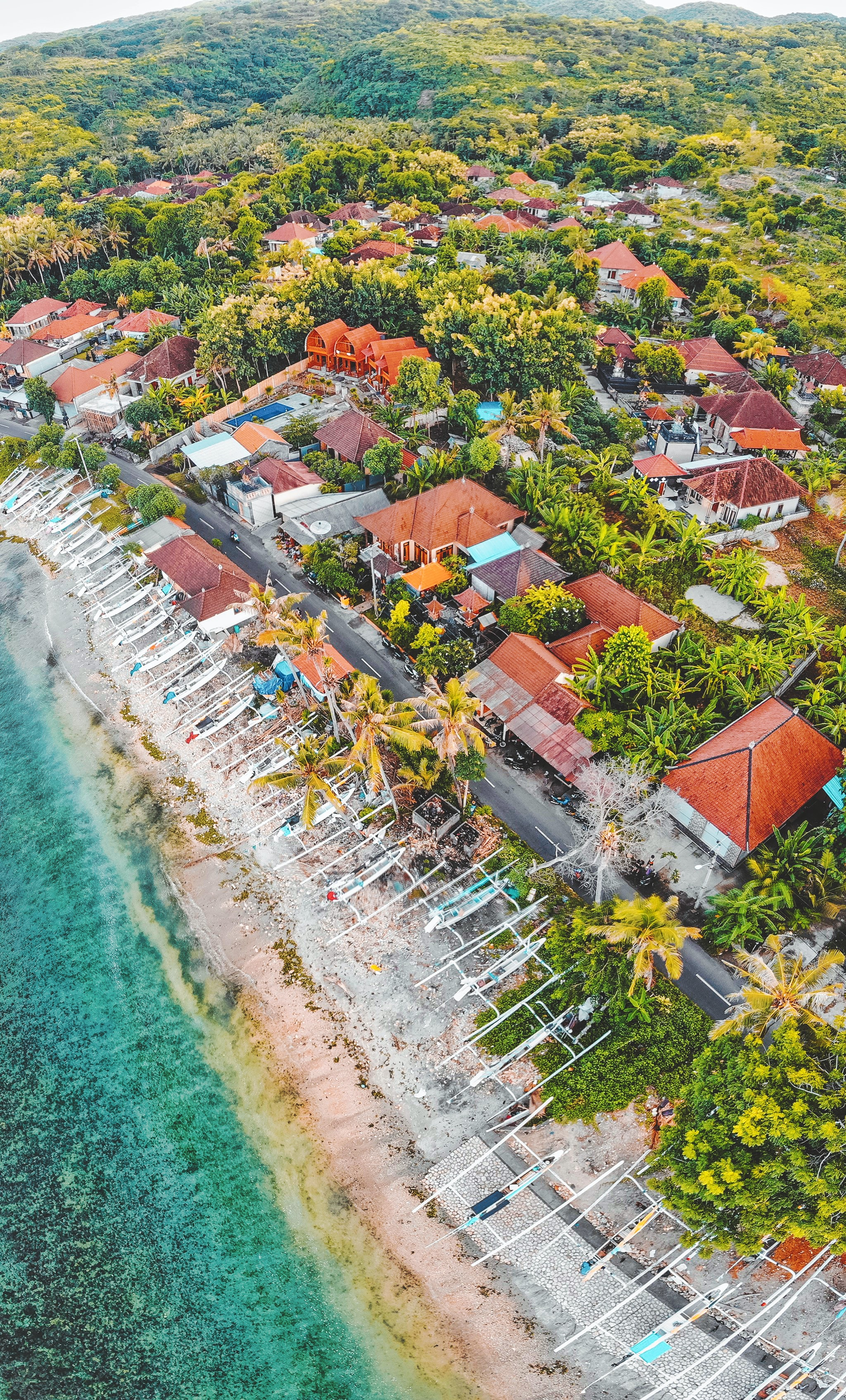 aerial photography of buildings and trees beside sea