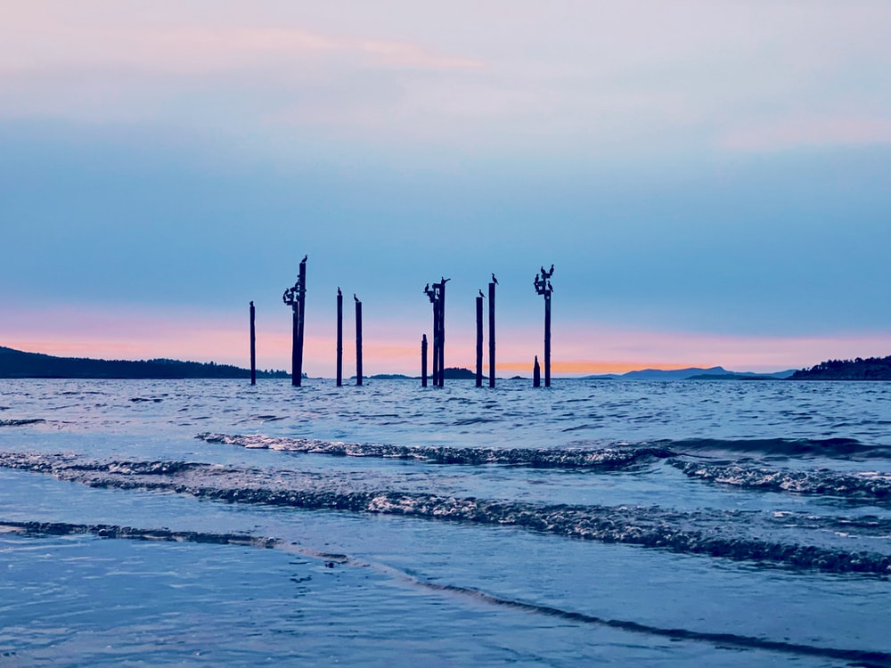 posts in body of water under cloudy sky