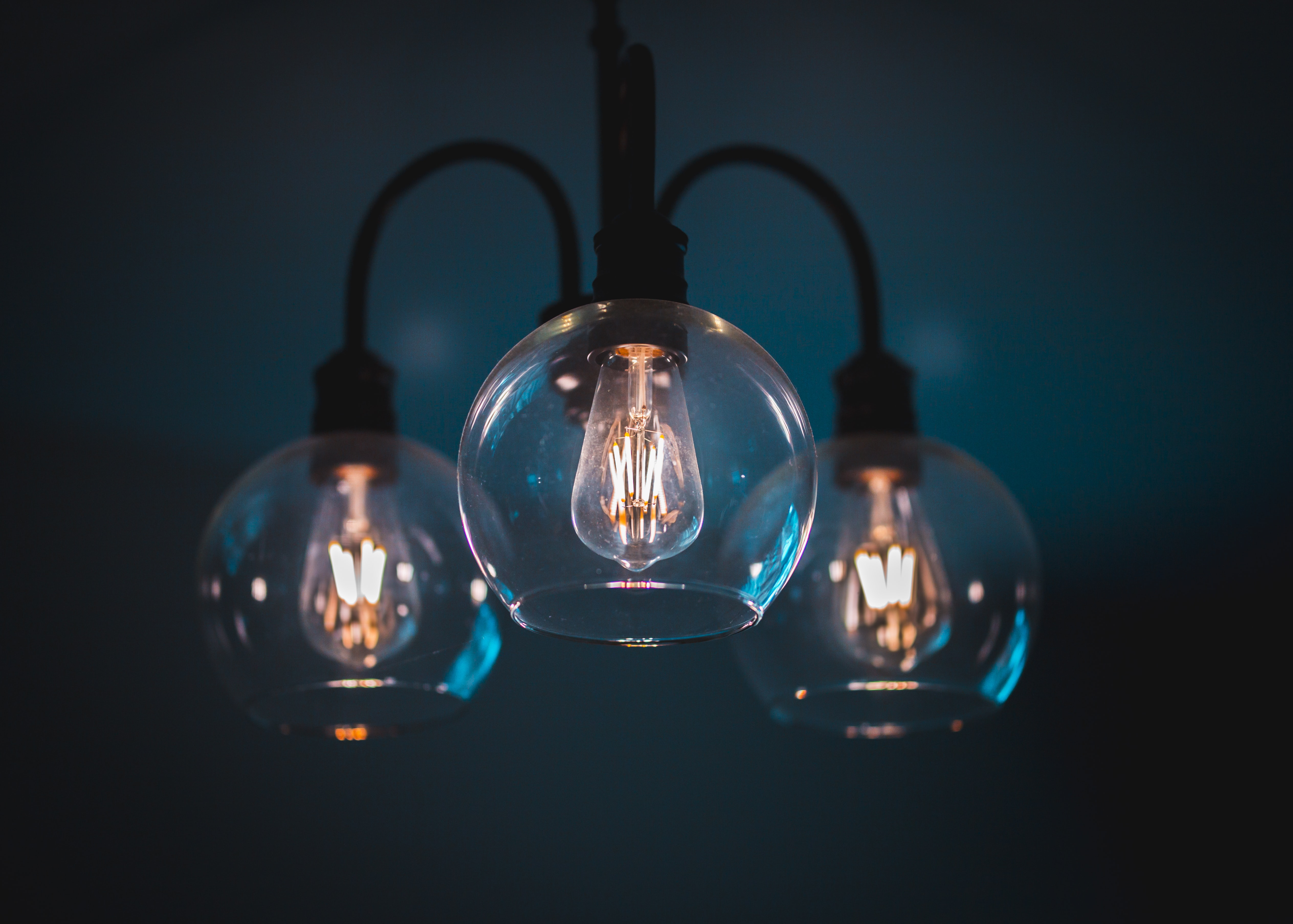 close-up photography of lighted bulbs