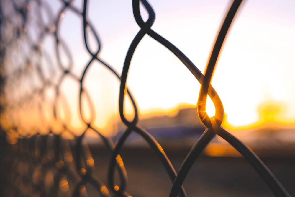 close-up photography of brown fence