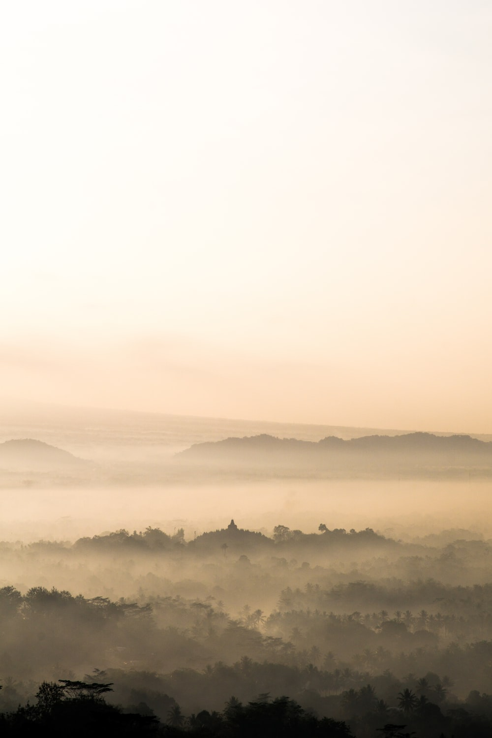 mountains under by fogs