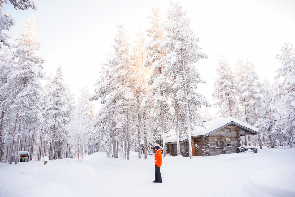 man in orange top standing near trees on snow-covered field