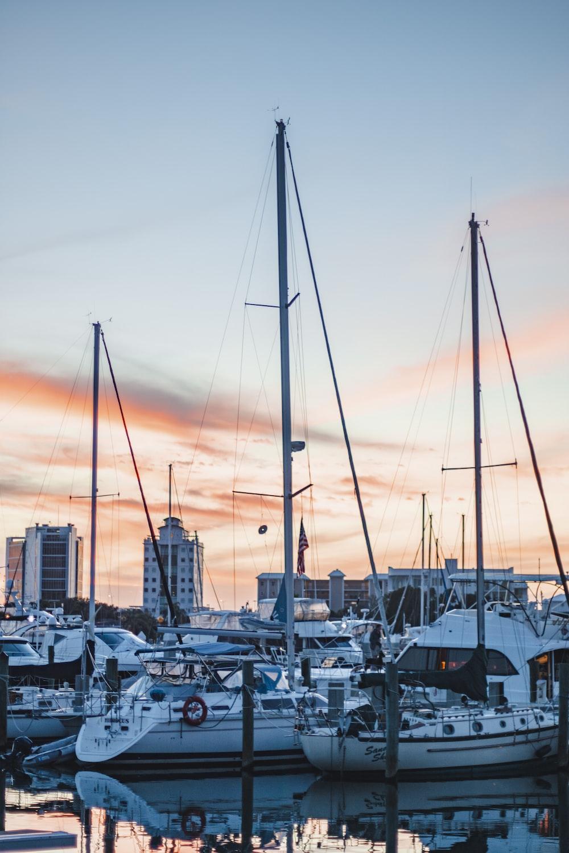 yachts docked on docking area