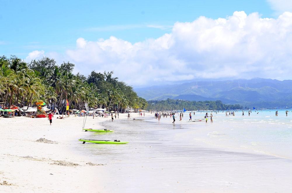 people standing on shoreline