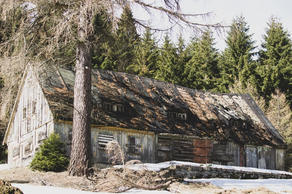 brown wooden house on focus photography