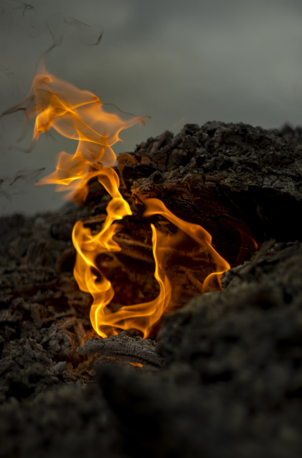close-up photo of fire