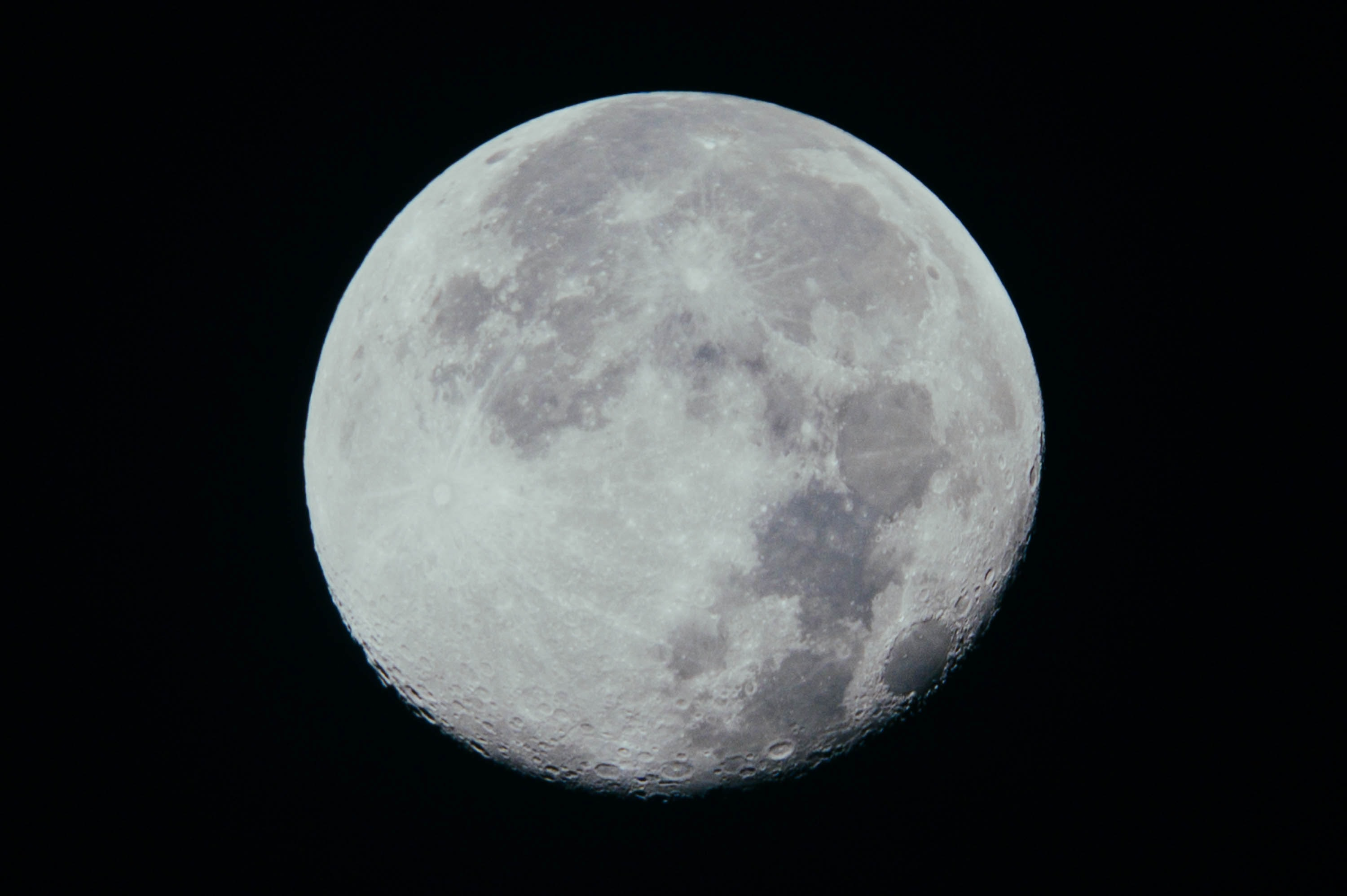 close-up photography of moon