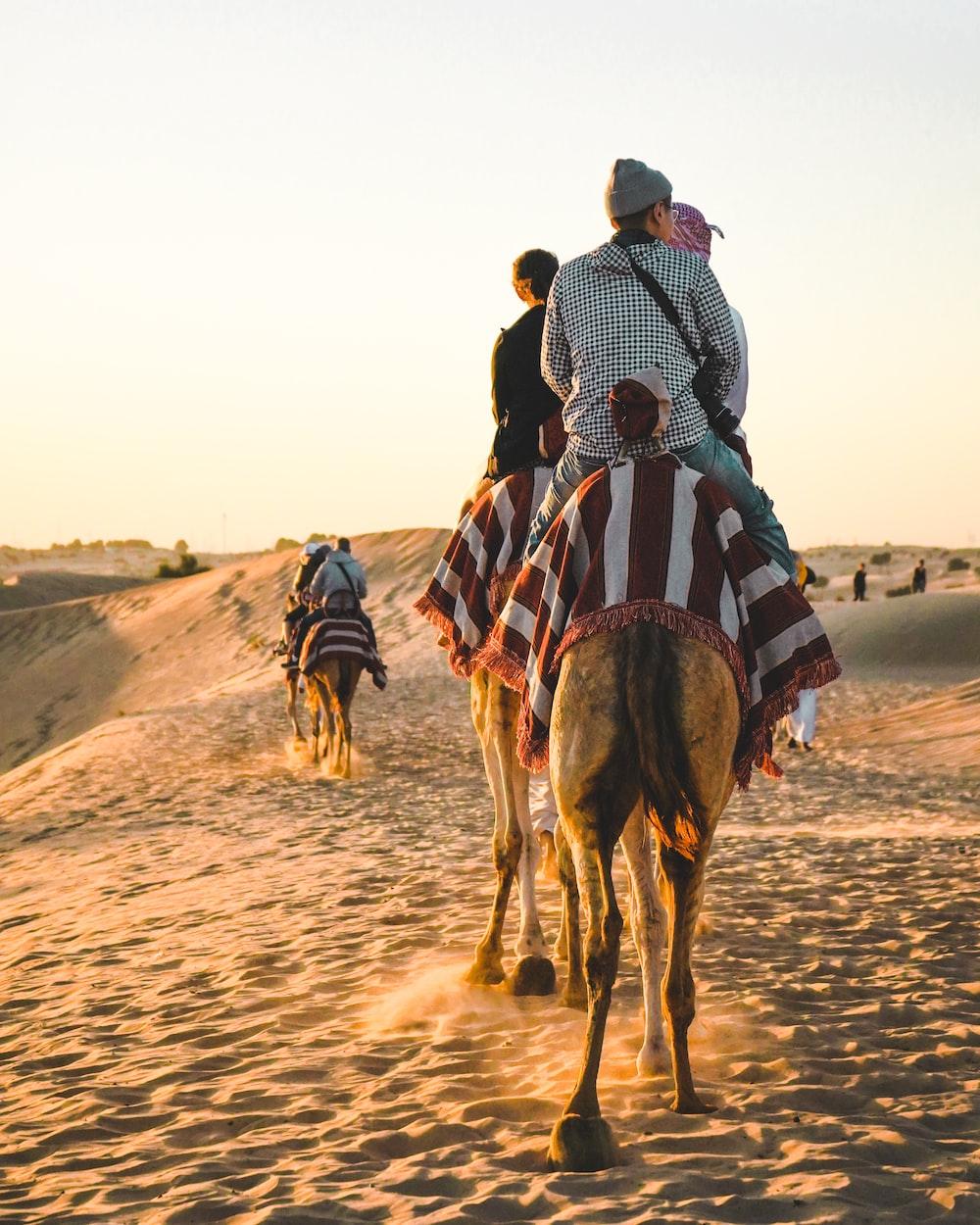 people riding camel at Sahara desert