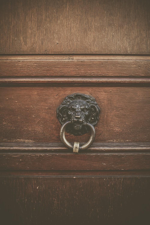 brown metal lion door knocker