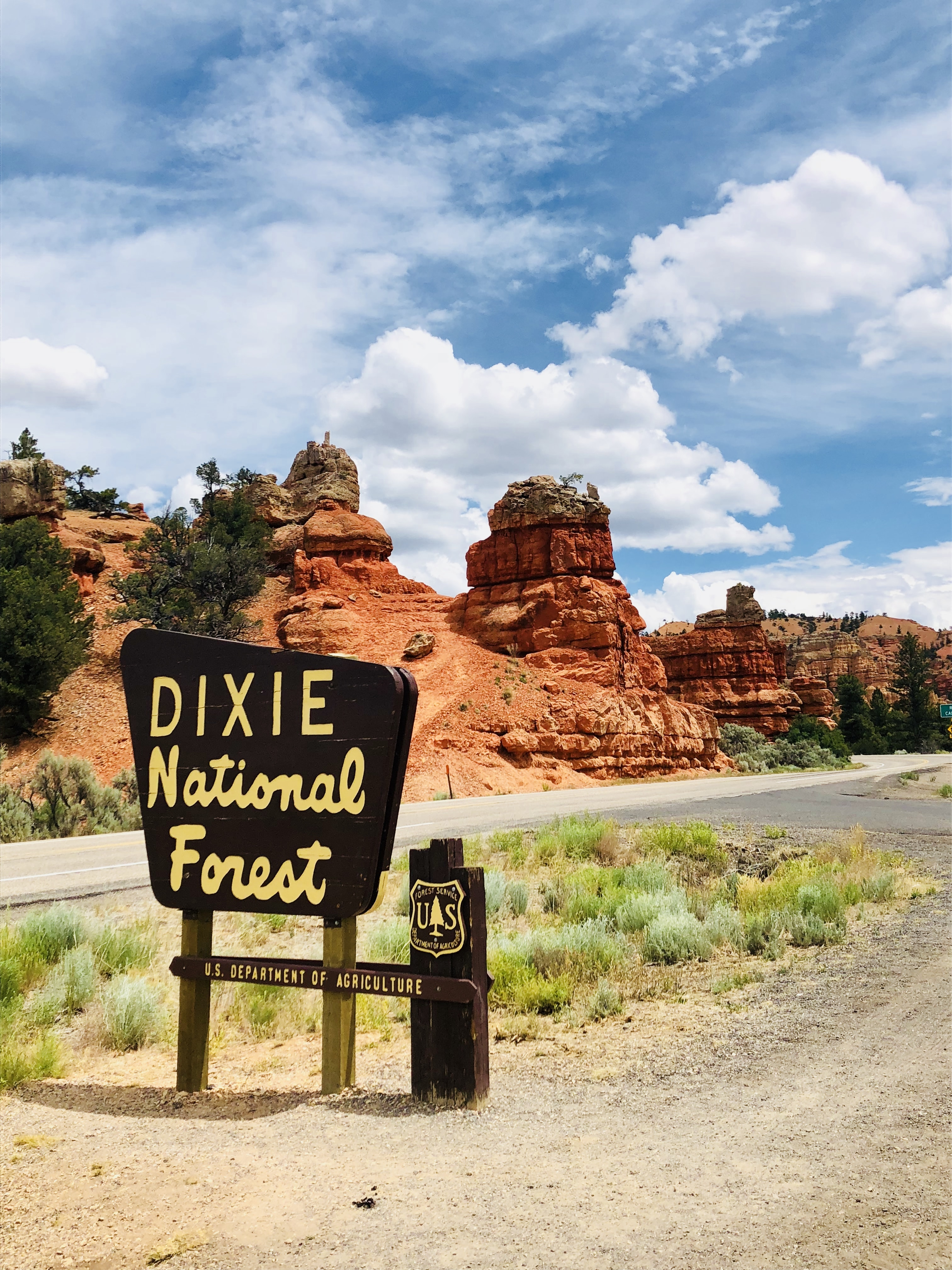 Dixie National forest sign near road