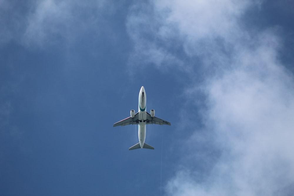 white and gray passenger plane