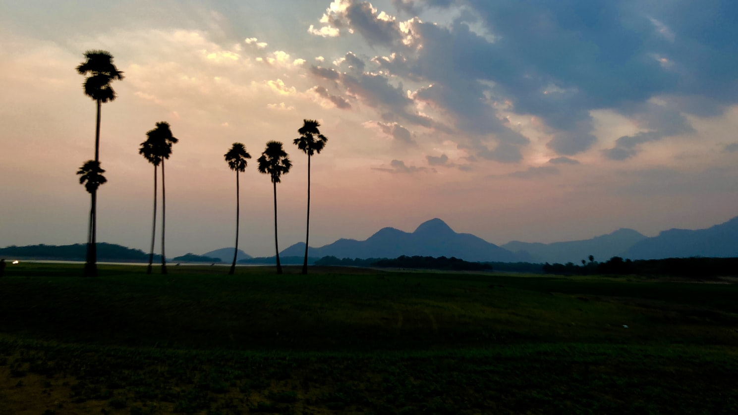 A click in Palakkad