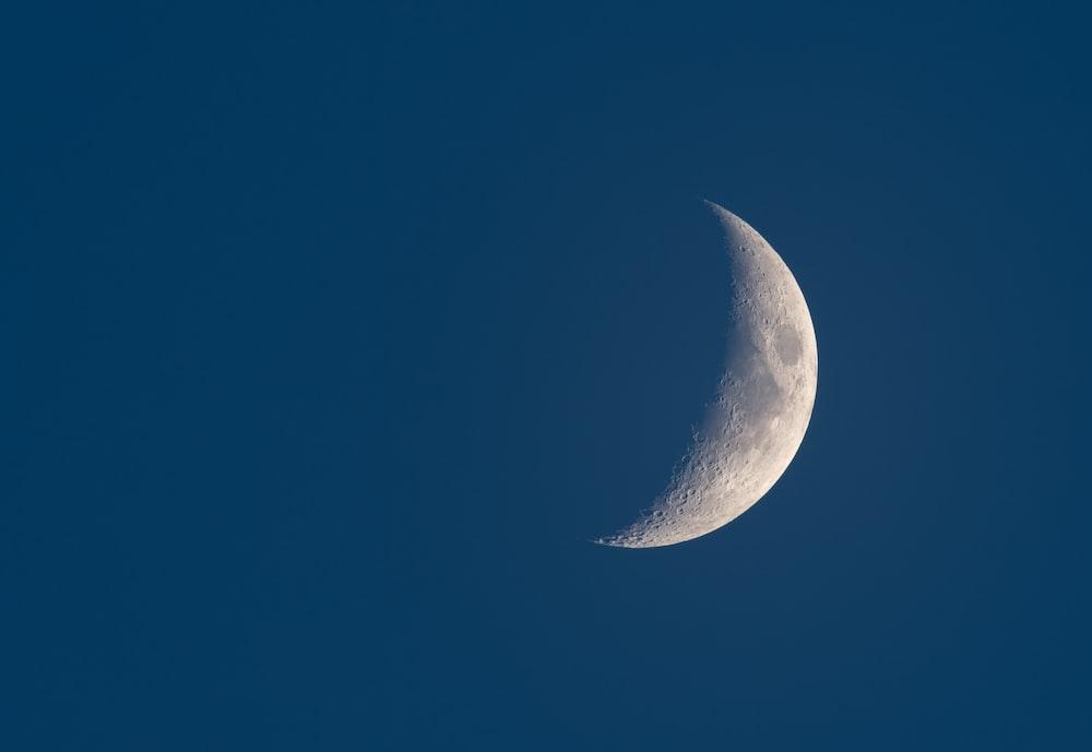 half moon display