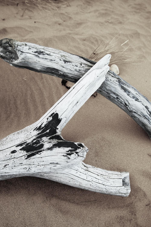white wood logs on sand