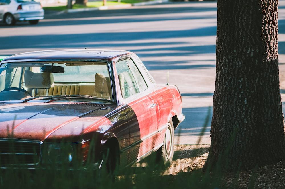 red car near tree