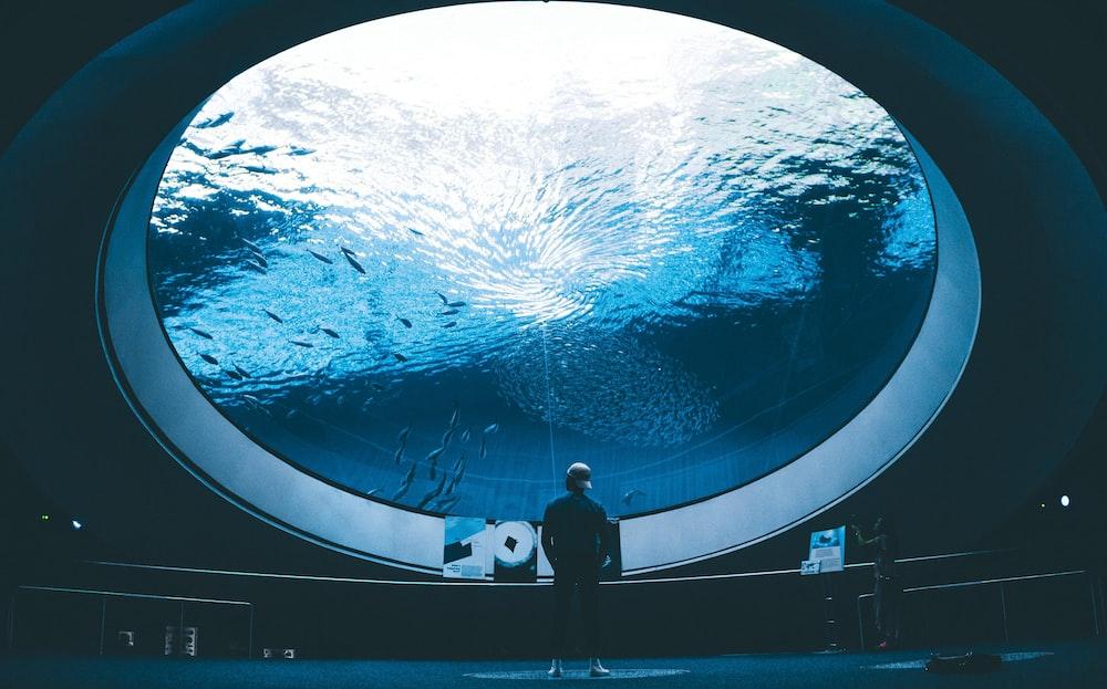 man standing in front of aquarium