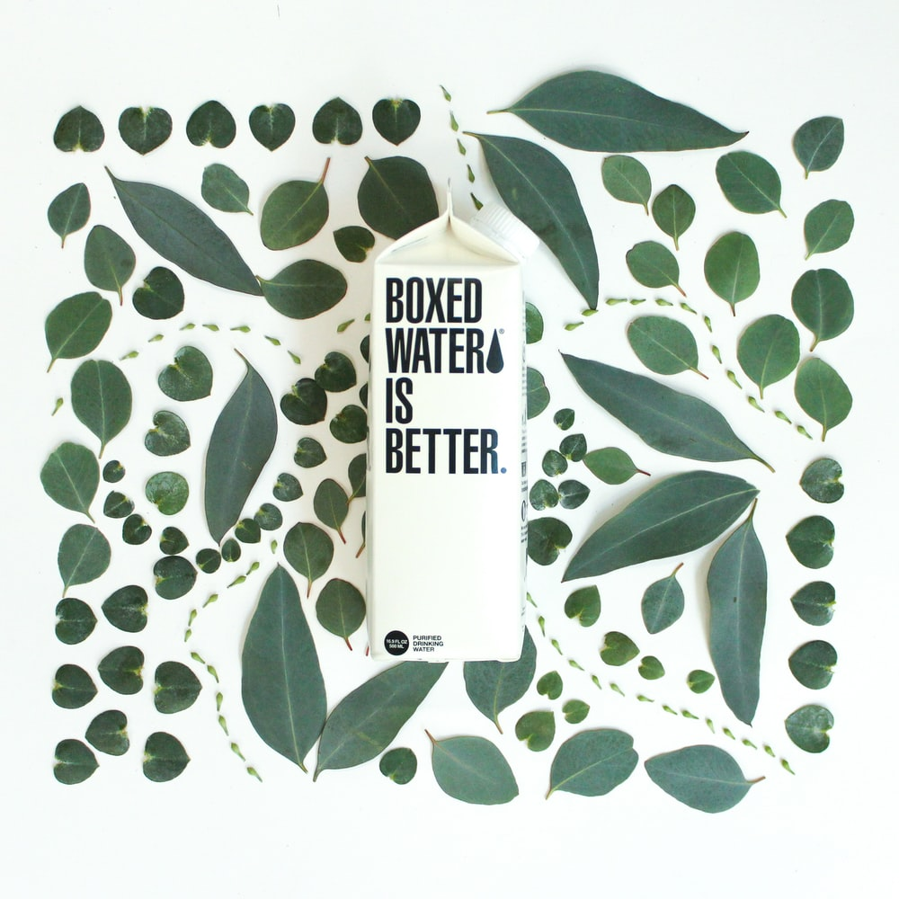 Boxed Water carton next to intricately arranged green leaves