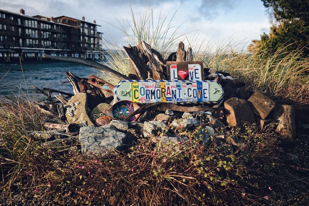 Cormorant Cove