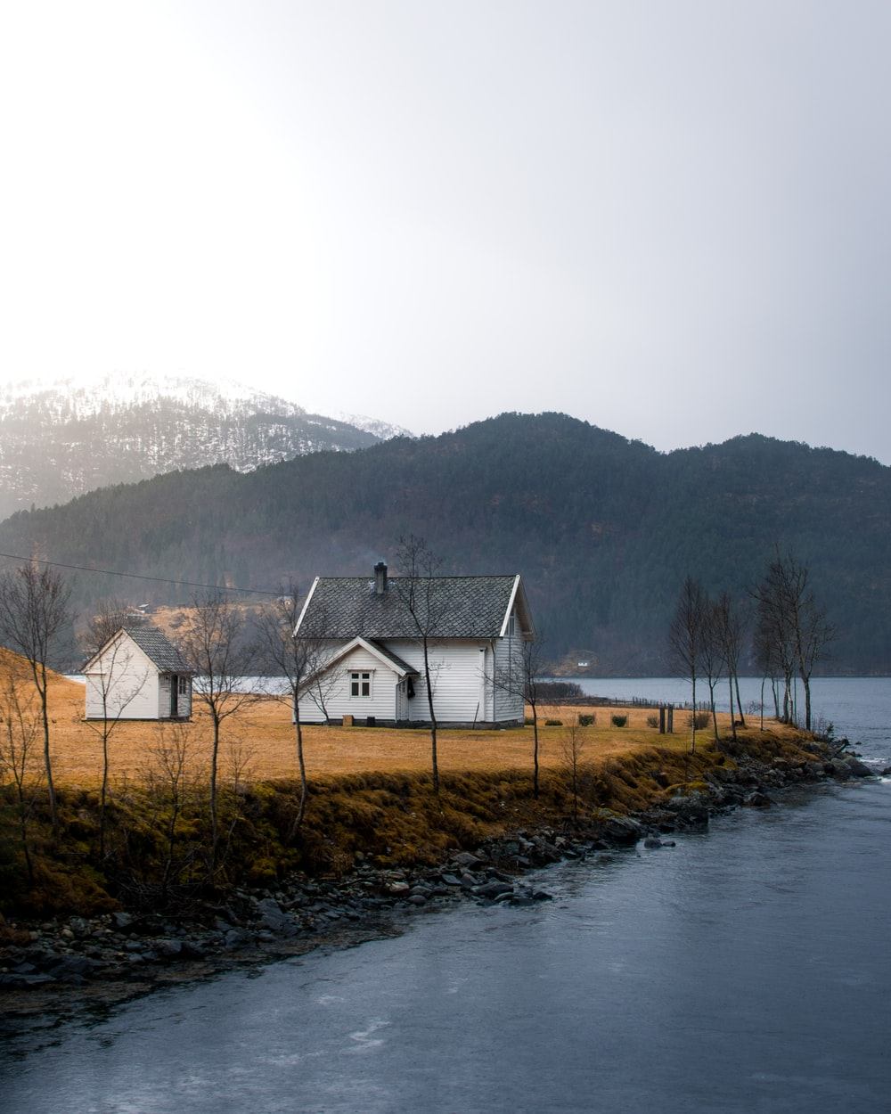 houses on shore near body of water