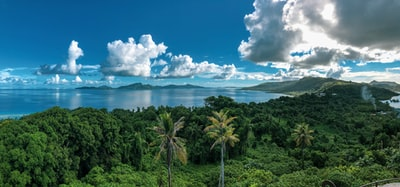 green trees and mountains micronesia zoom background