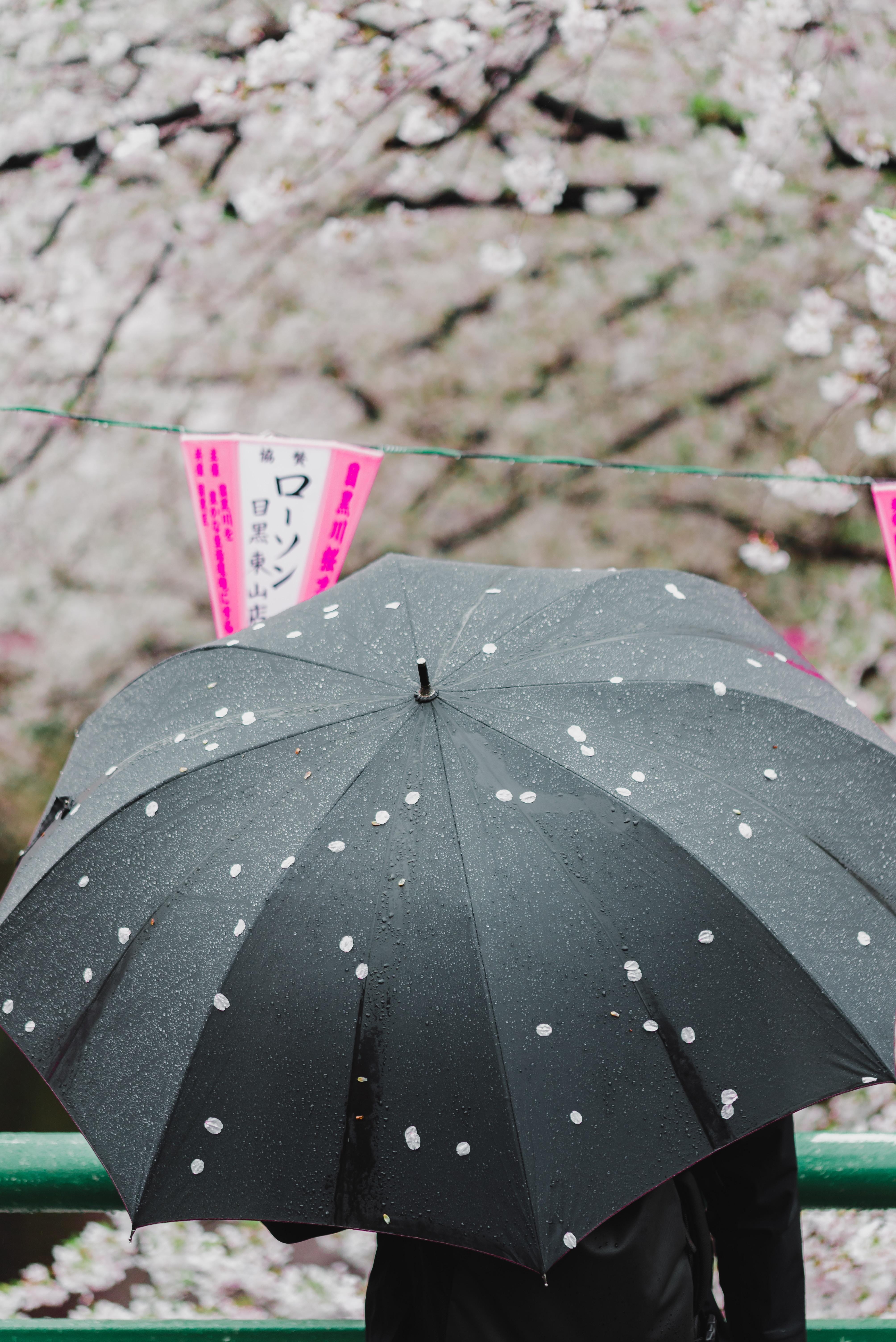 person using gray umbrella