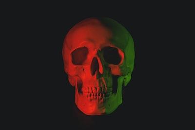 skull head bust with led light skull teams background