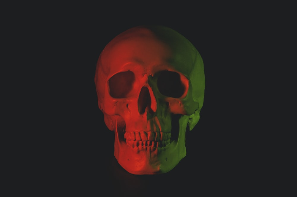 Skull Pictures | Download Free Images