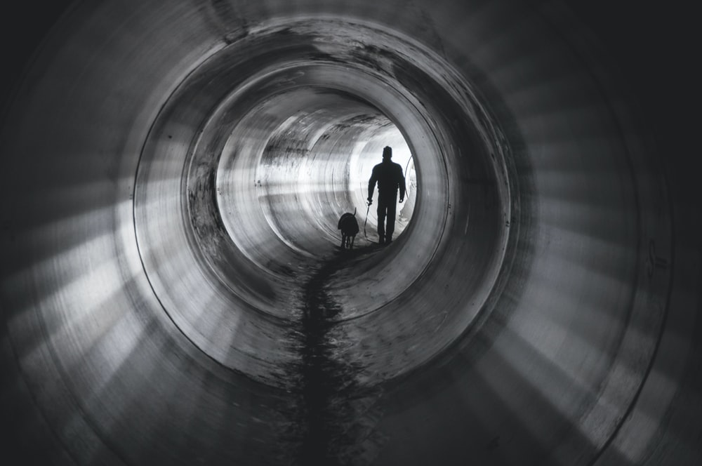 man and animal inside tunnel