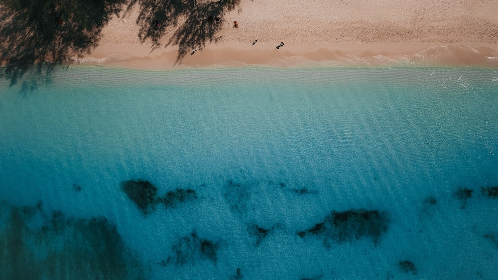 top-view photography of beach during daytime
