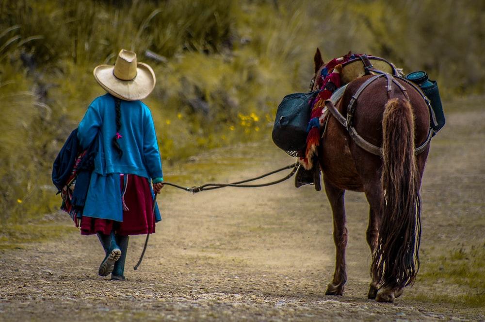woman beside brown horse