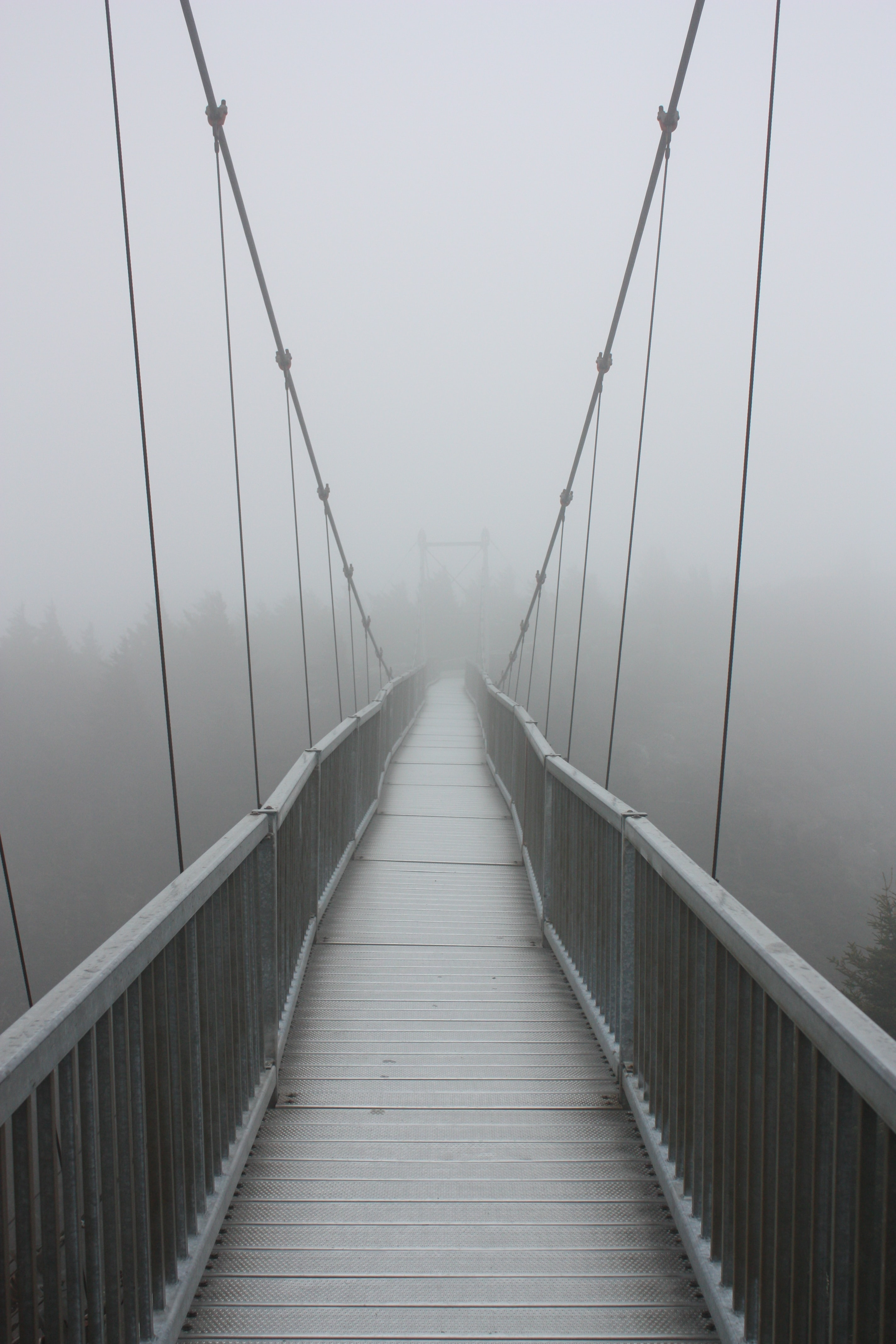 wooden bridge in grayscale photography