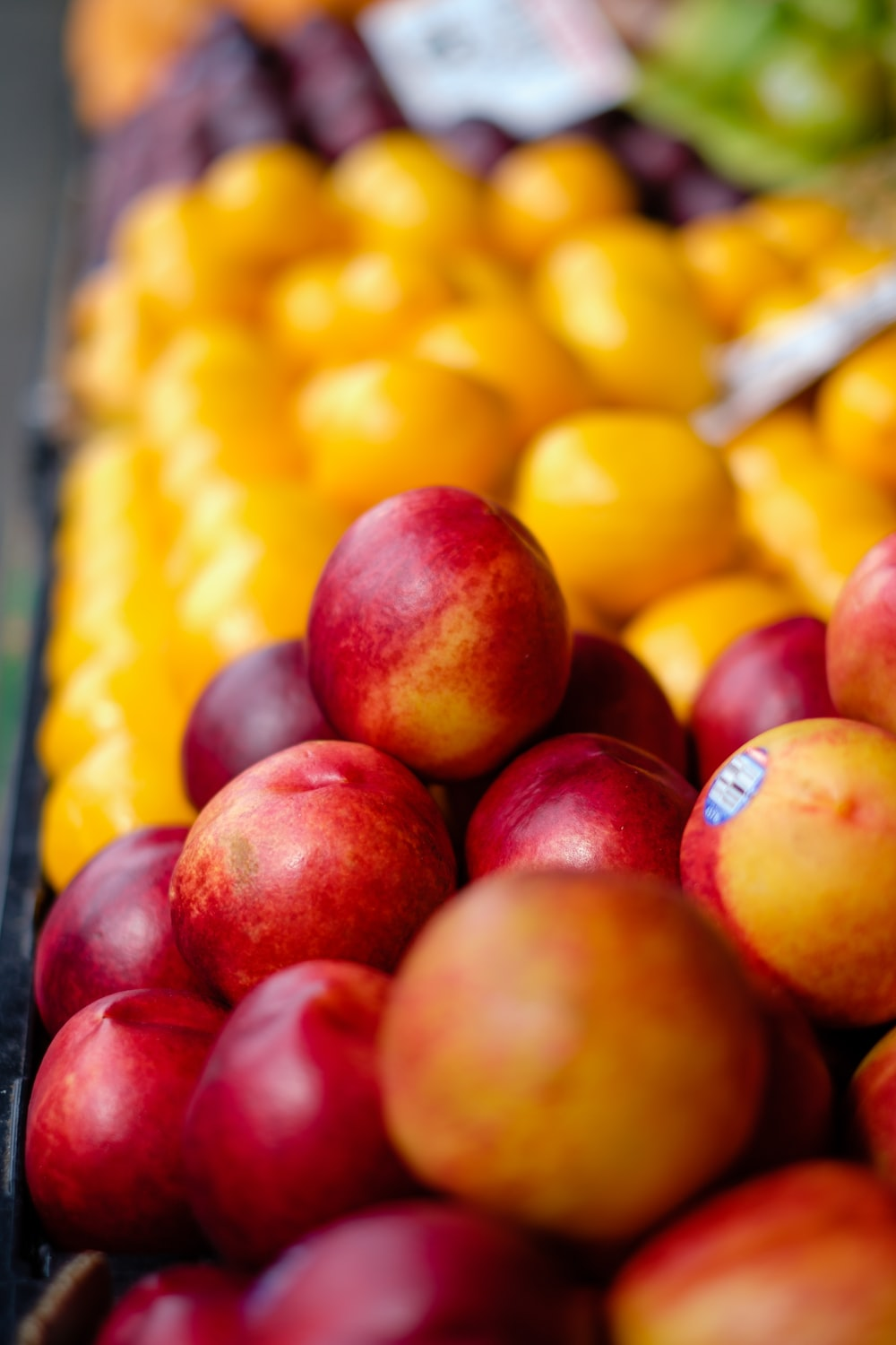 shallow focus photography of red apple fruits
