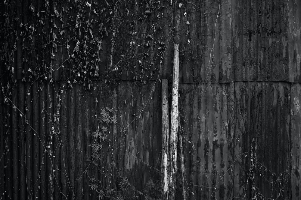 wood logs on wall