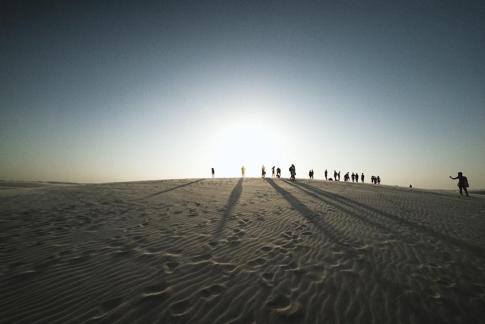 people on desert under blue sky