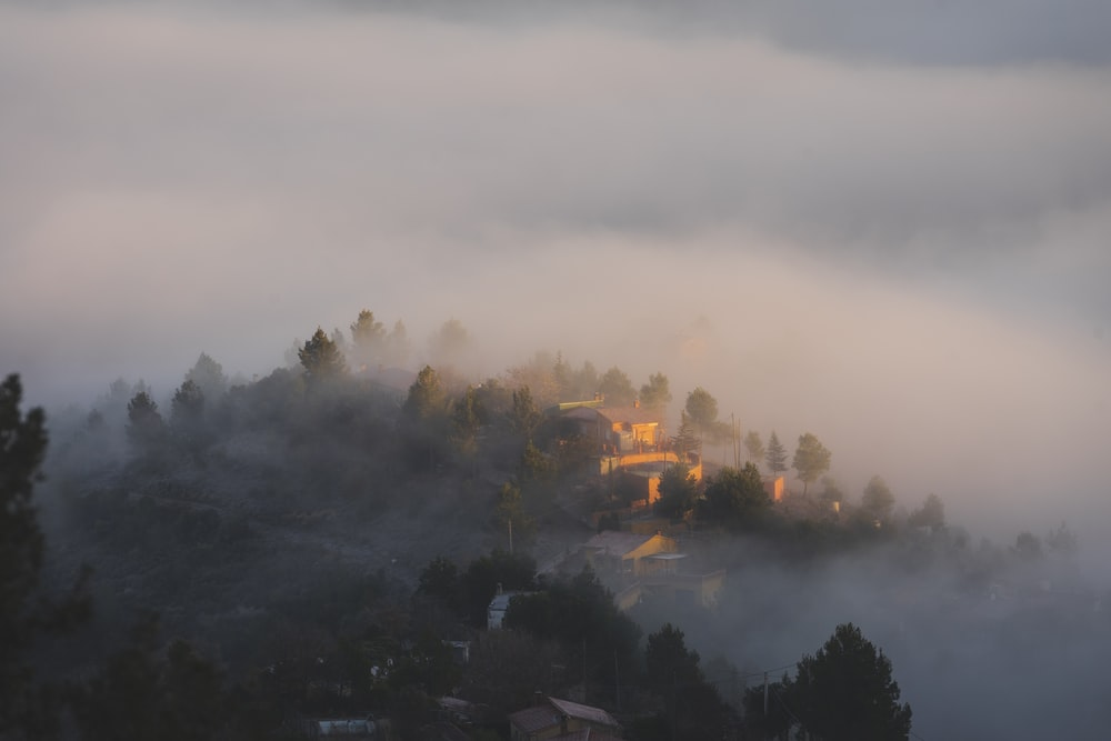 aerial view photography of village covered with fog