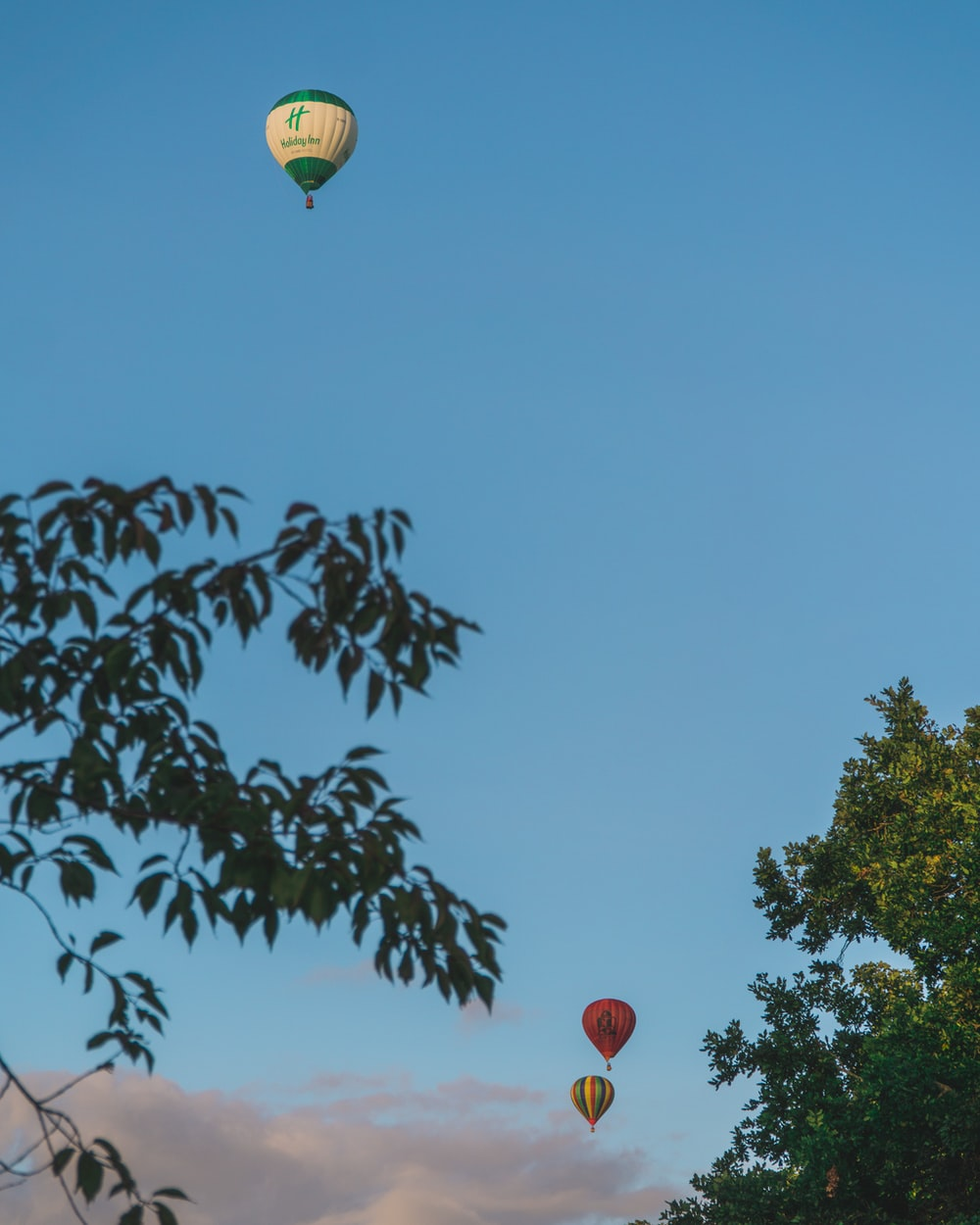 three assorted-color hot air balloons near trees